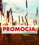 promocja andrzej wojtkowski tomasz lipiński