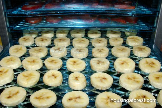 jak suszyć jabłka w piekarniku