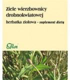 ziele wierzbownicy drobnokwiatowej flos