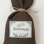 Woreczek-Echinacea-jeżówka-purpurowa-50g-Andrzej-Wojtkowski