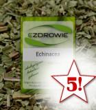 5x Jeżówka purpurowa (Echinacea) - 50g - Andrzej Wojtkowski